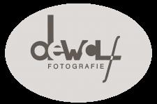 logo aangepast